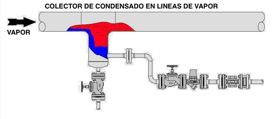 Colector de condensado linea de vapor
